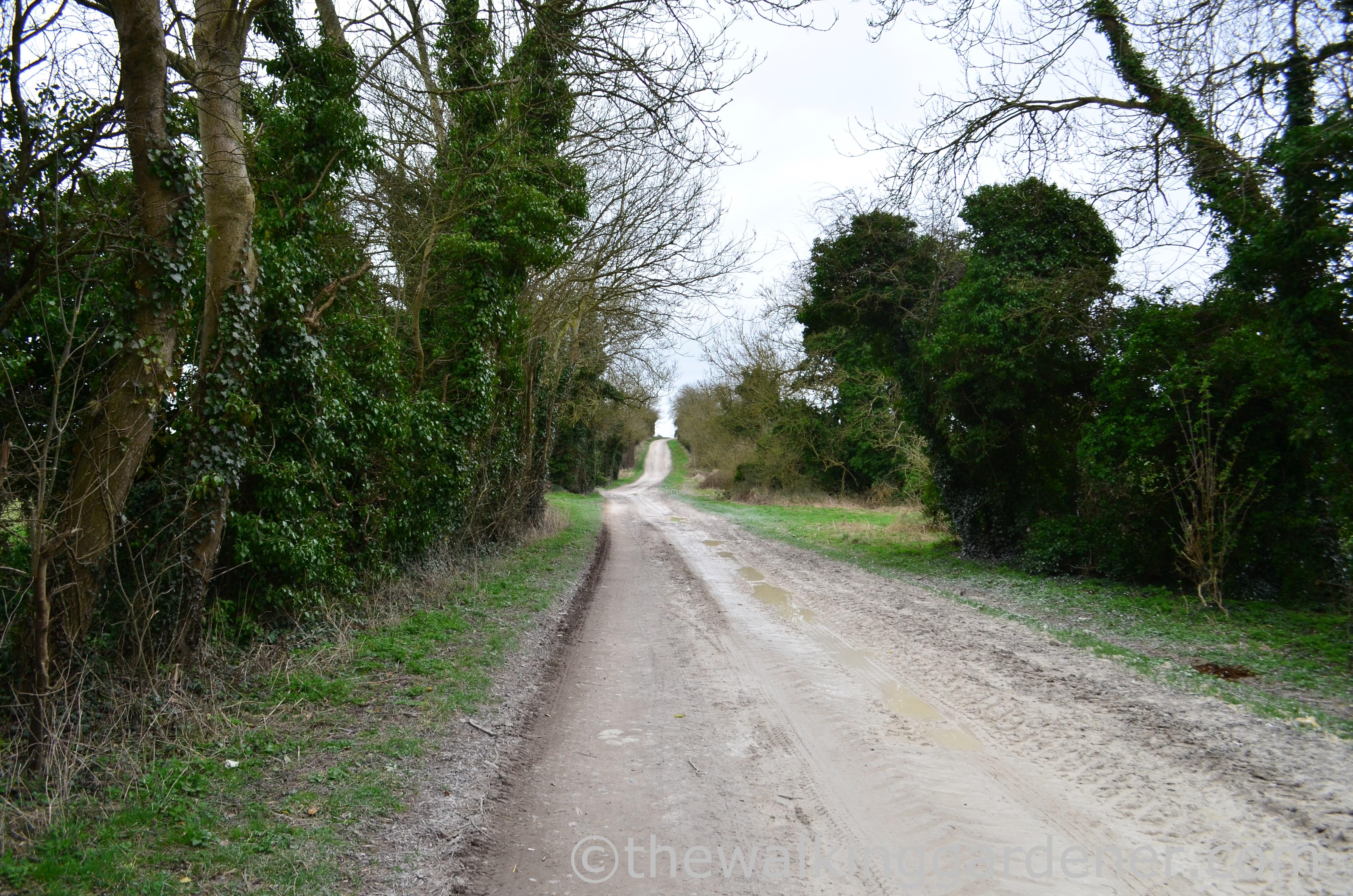 The Ridgeway Day 2 (18)