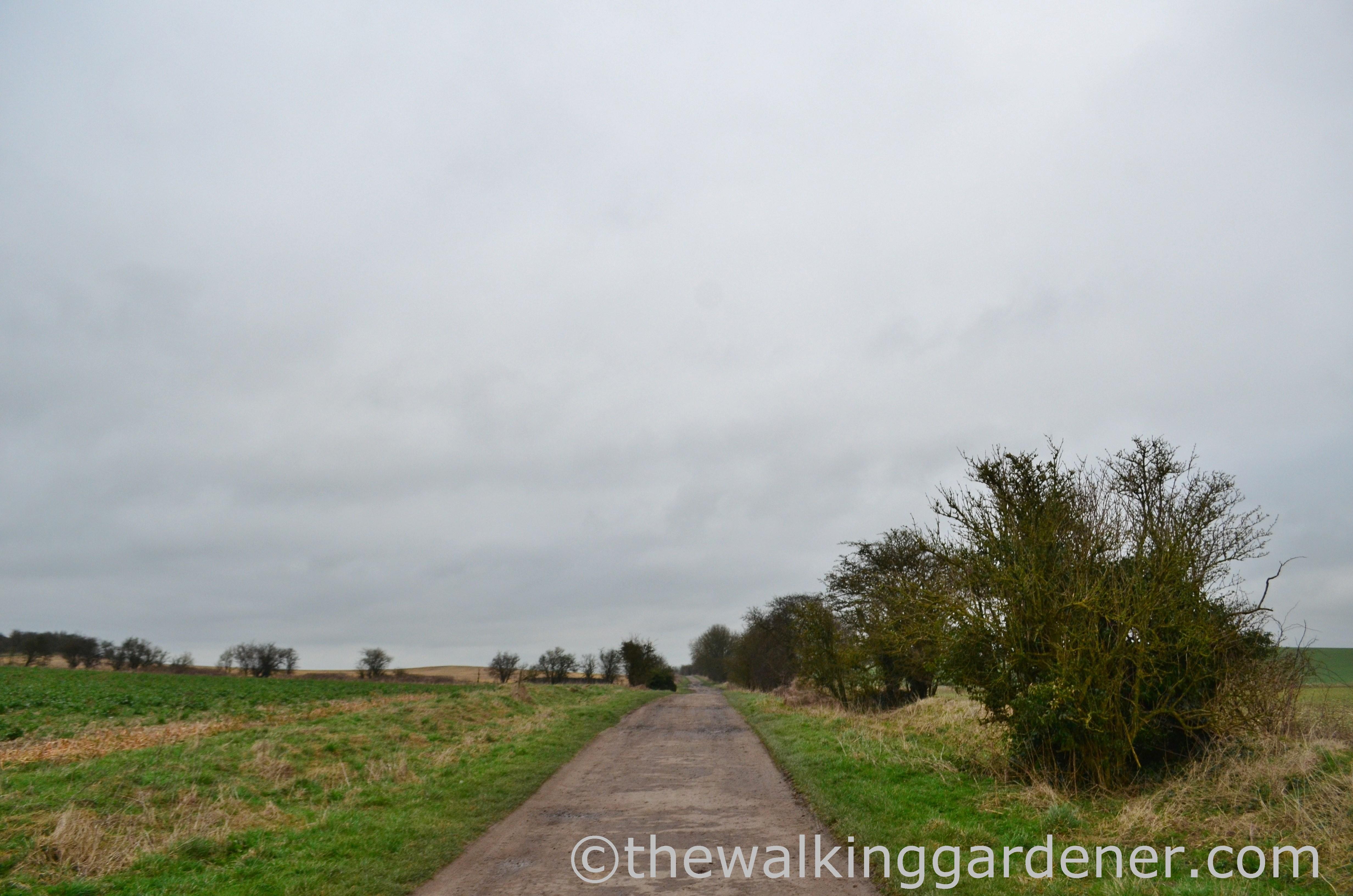 The Ridgeway Day 2 (3)