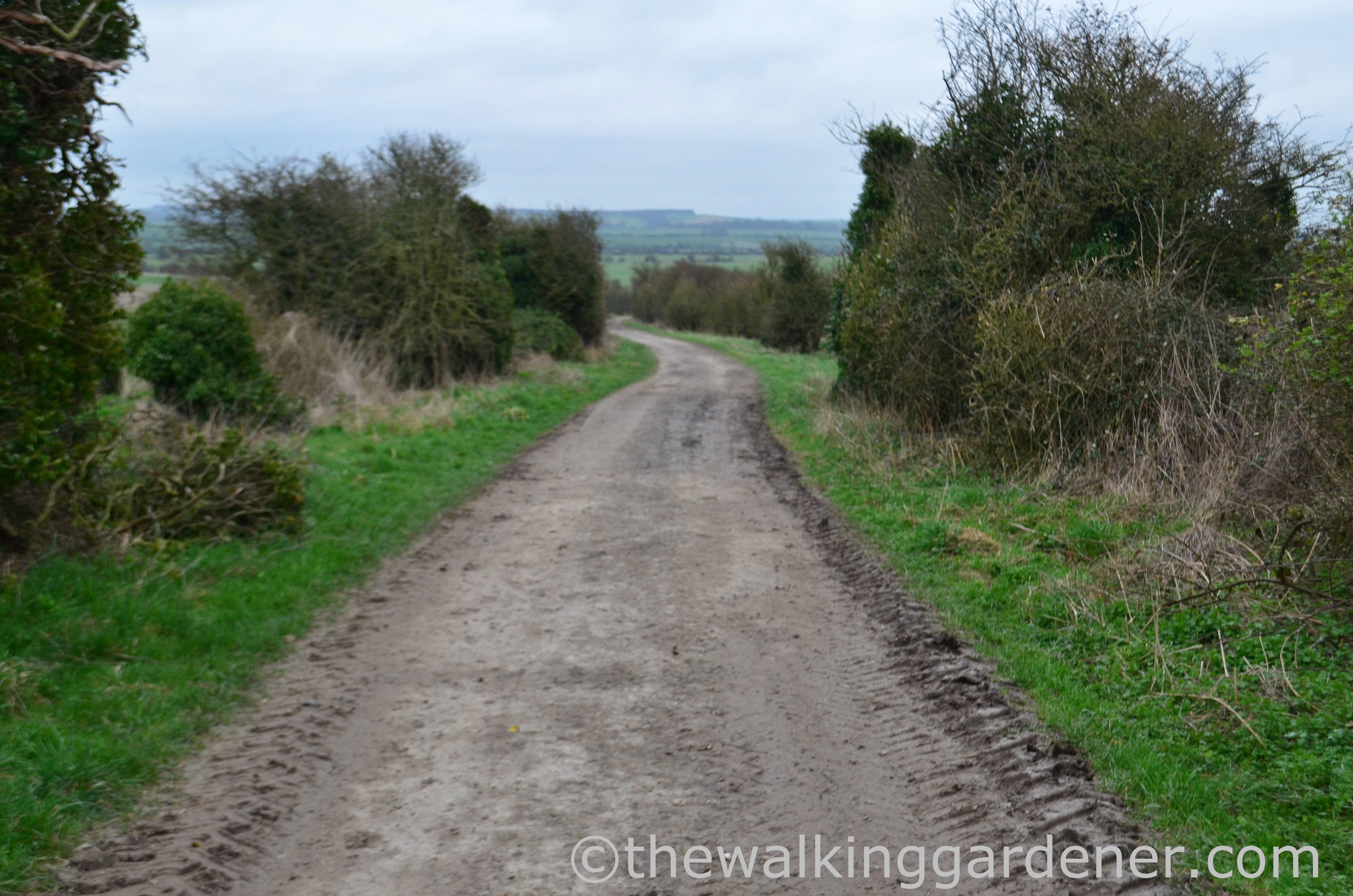 The Ridgeway Day 2 (4)