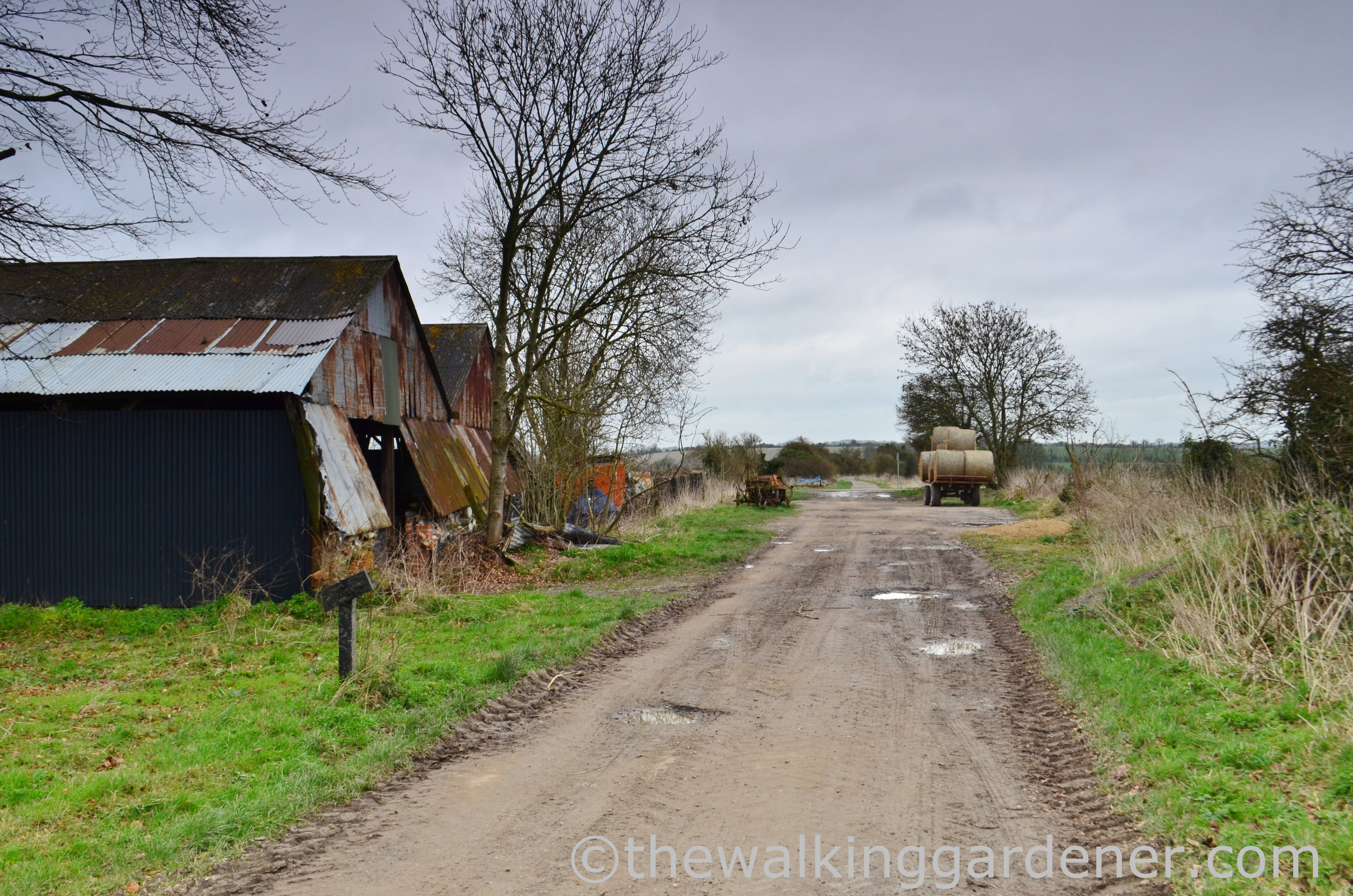 The Ridgeway Day 2 (5)