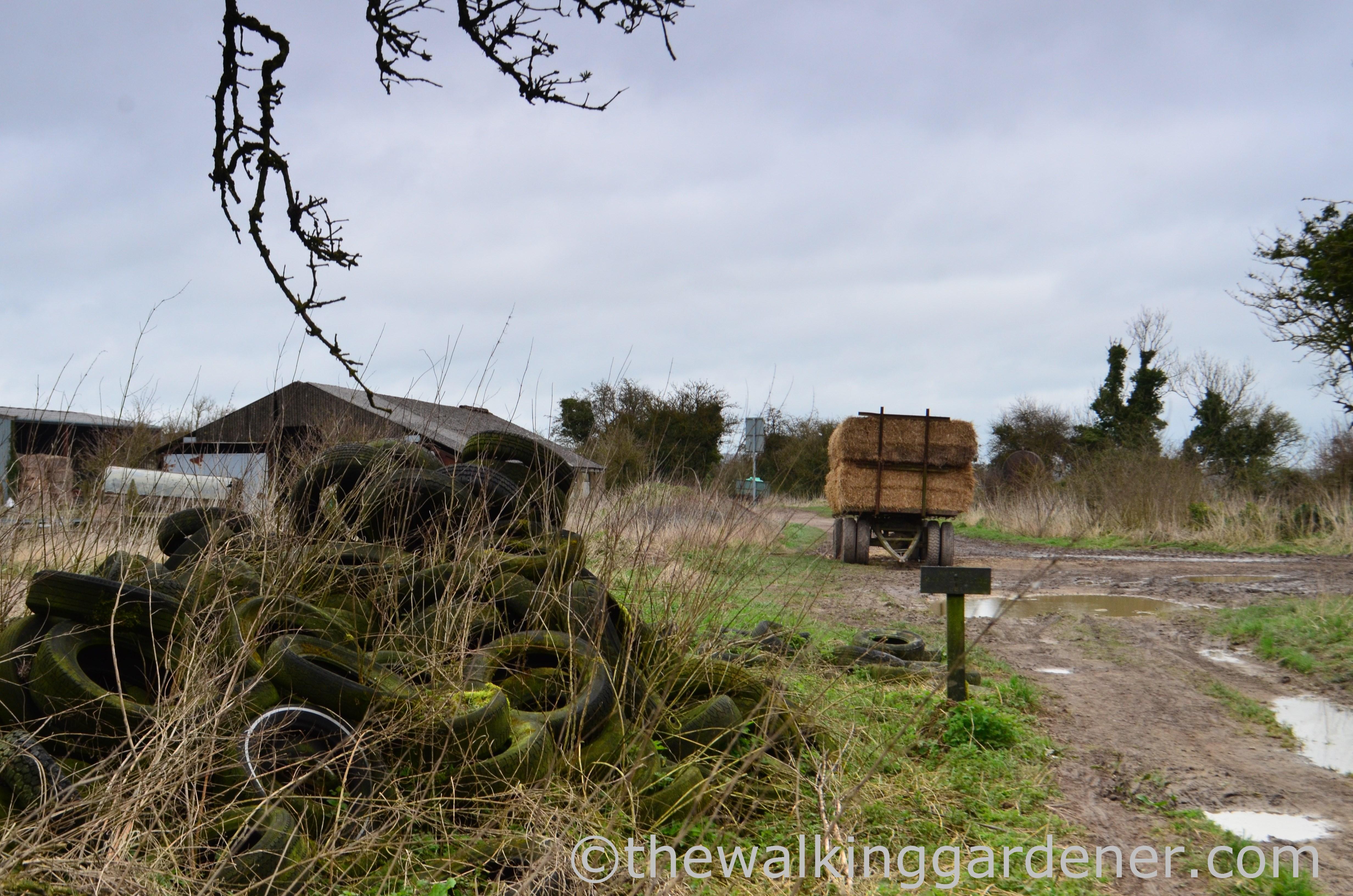 The Ridgeway Day 2 (6)