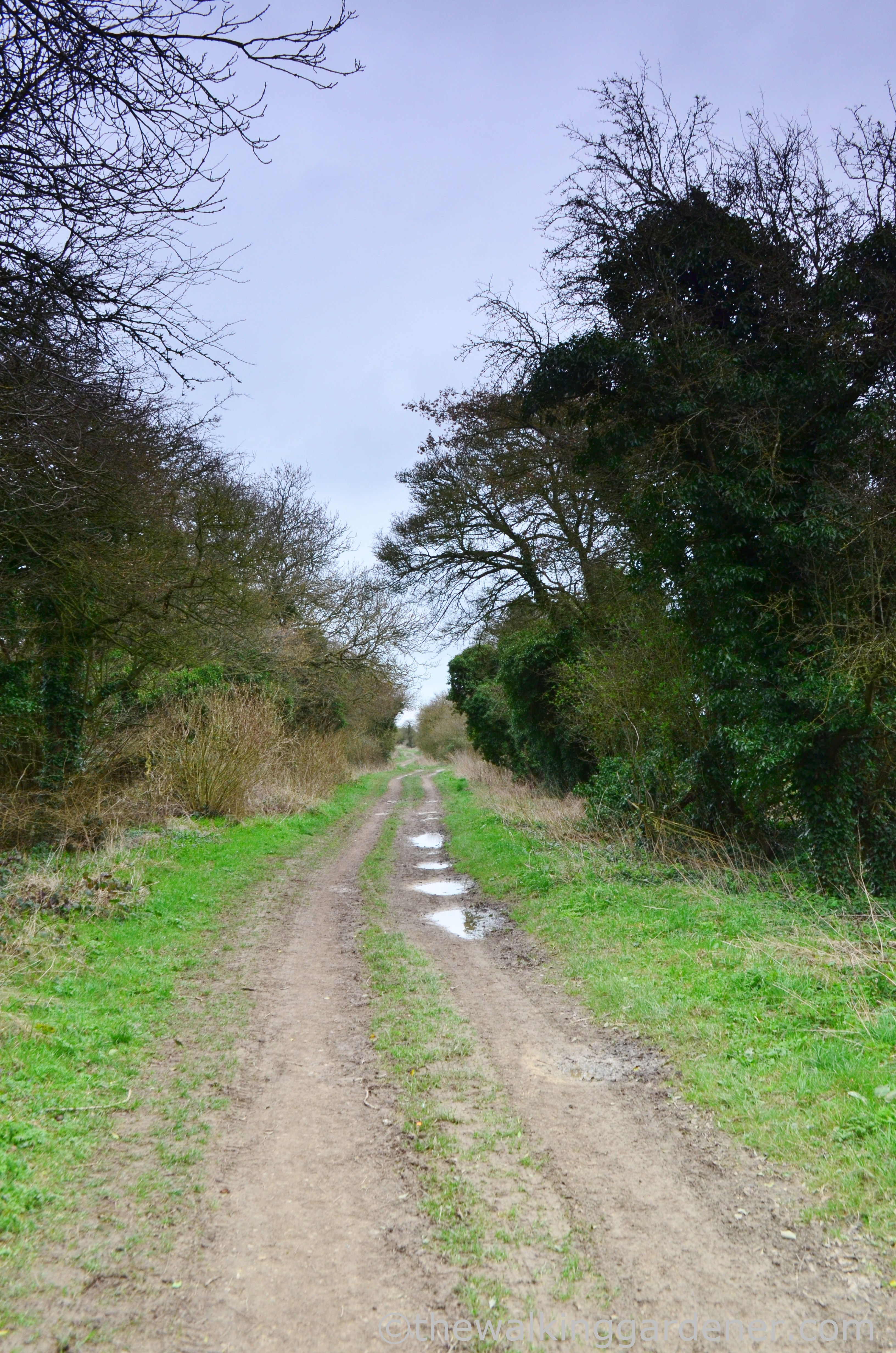 The Ridgeway Day 2 (8)